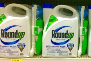 O Roundup provoca câncer, conclui a Justiça dos EUA