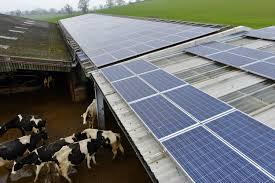 Dispensa de Reserva Legal para imóveis rurais que implementarem energia alternativa