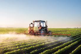 Agrotóxicos: multinacional terá que indenizar trabalhadora rural do DF