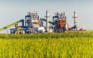 Tese da responsabilidade objetiva pela queima de cana-de-açúcar não tem sido acolhida nas câmaras de Direito Ambiental do TJ-SP.
