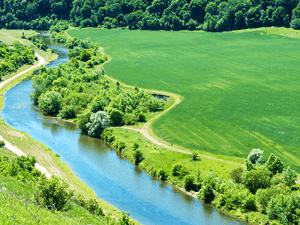 1ª Seção do STJ consolidou entendimento de que a responsabilidade administrativa ambiental é subjetiva. Imagem Pavlo Vakhrushev