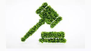 Responsabilidade administrativa ambiental é subjetiva, define 1ª Seção do STJ