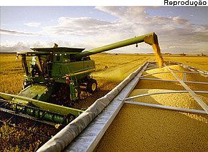 Juiz determinou a destruição de plantio experimental de soja em Mato Grosso