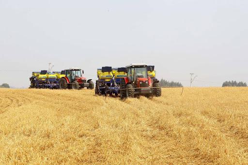 Juiz determina destruição de plantio experimental de soja em Mato Grosso